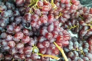 新年洗葡萄万不行直接用水泡教你1招葡萄洁净甜美