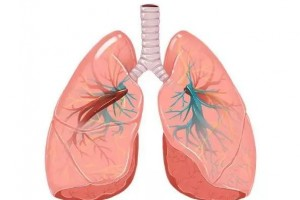 鼻炎重复犯或许脏腑呈现了问题