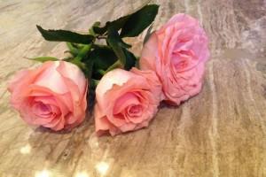 黄酒泡玫瑰花怎么做黄酒泡玫瑰花的功效是什么